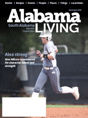 Link to the current Alabama Living magazine